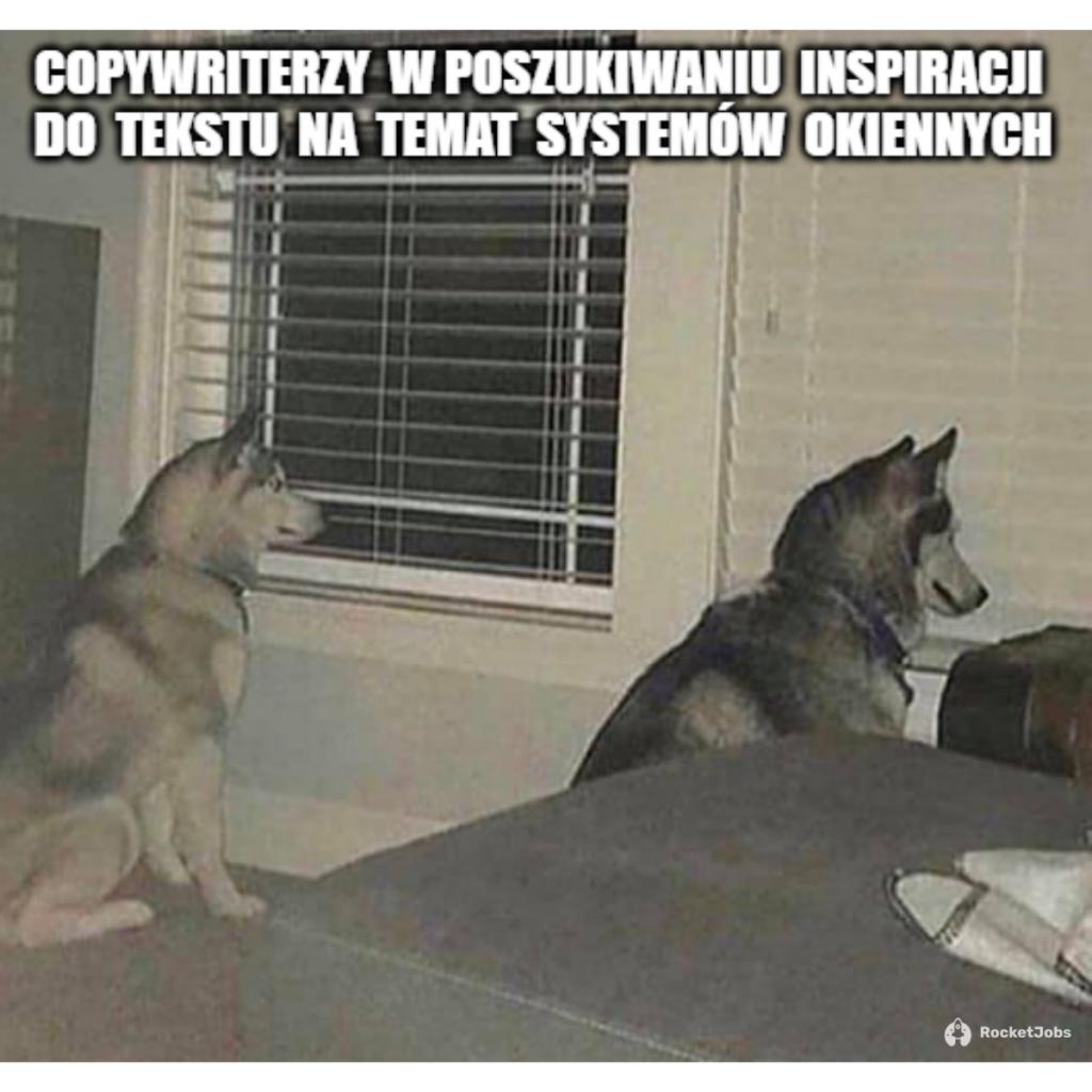 mem copy