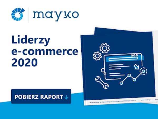 raport seo 2020