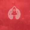 memy rocket jobs